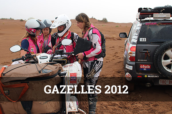 gazelles-2012-cover